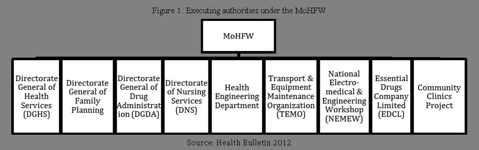 national nursing council